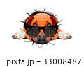 動物 犬 ポリゴンのイラスト 33008487