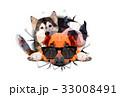 動物 犬 ポリゴンのイラスト 33008491