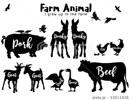 Farm Animals Silhouettes Isolated  33011036