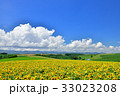 丘 美瑛町 新栄の丘の写真 33023208