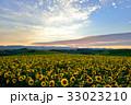 丘 美瑛町 新栄の丘の写真 33023210