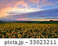 丘 美瑛町 新栄の丘の写真 33023211