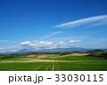 富良野 畑 風景の写真 33030115