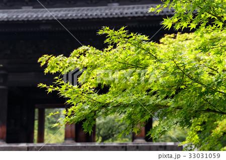 南禅寺 - 三門 33031059