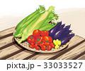 野菜 夏野菜 緑黄色野菜のイラスト 33033527