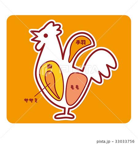 鶏肉の部位 33033756