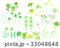 花 葉 フローラルのイラスト 33048648