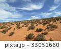 砂漠地帯の草木 33051660