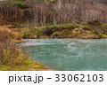 自然 池 植物の写真 33062103