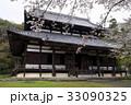4月 桜の根来寺-紀州のサクラ- 33090325