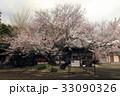 4月 道成(どうじょう)寺の入相(いりあい)桜 33090326