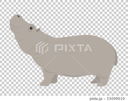 birch, hippopotamus, animal 33099010