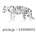 ホワイトタイガー 33099603