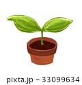 芽 発芽 成長 イラスト 33099634
