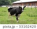 牛・ホルスタイン 33102420