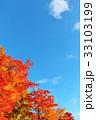 青空 秋晴れ 紅葉の写真 33103199