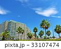青空 夏 椰子の写真 33107474