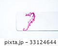 透明骨格標本 33124644