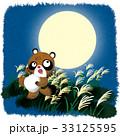 満月とタヌキ 33125595