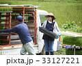 女性 農業体験 田植えの写真 33127221
