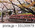 満開の桜の下で並ぶ地蔵たち 33130979
