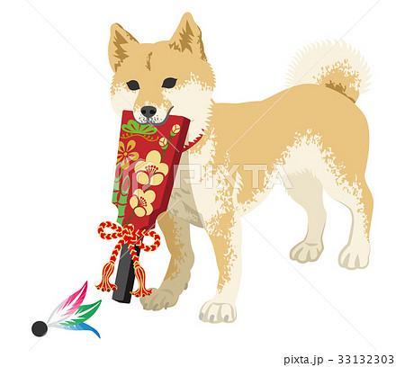 年賀状素材 羽子板を咥える柴犬 33132303