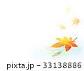 めだかと紅葉背景ヨコ(水面) 33138886