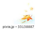 赤トンボとメダカ背景ヨコ(紅葉) 33138887