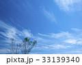 雲 空 秋の写真 33139340