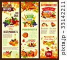 Autumn sale banner set of fall harvest celebration 33142211