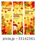 Autumn sale banner set of fall leaf and pumpkin 33142361