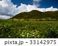 沖縄 風景 自然の写真 33142975