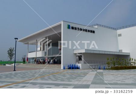 仙台うみの杜水族館 33162259