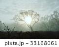 朝 朝霧 秋の写真 33168061