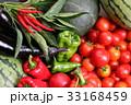 夏野菜 33168459