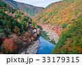 京都 保津峡の紅葉 33179315