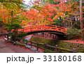 北野天満宮 もみじ苑 京都の写真 33180168