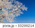 ウィンター ウインター 冬の写真 33200214