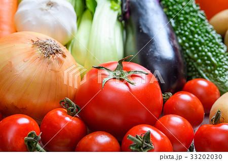 野菜 33202030
