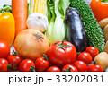 野菜 33202031