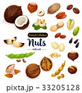 Nuts, seed, bean cartoon icon set for food design 33205128