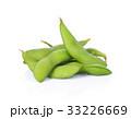 まめ マメ 豆の写真 33226669