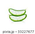リュウゼツラン 竜舌蘭 アロエの写真 33227677