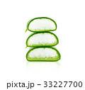 リュウゼツラン 竜舌蘭 アロエの写真 33227700