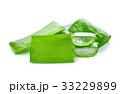 リュウゼツラン 竜舌蘭 アロエの写真 33229899