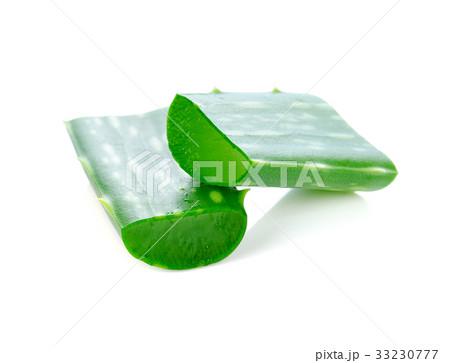aloe vera isolated on white background. 33230777