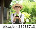 農業 ミドル 女性  野菜 農家 イメージ 33235713