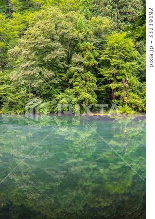 リフレのキレイな池 33239192