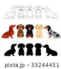 犬 ダックスフンド セットのイラスト 33244451
