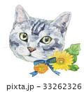 猫 ガーベラ 水彩のイラスト 33262326